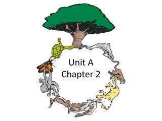 Unit A  Chapter 2