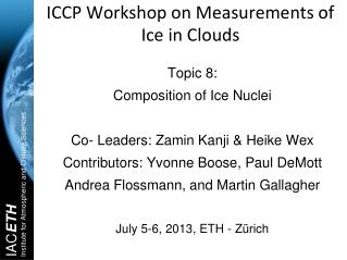 ICCP Workshop on Measurements of Ice in Clouds