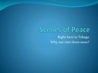 Scenes of Peace
