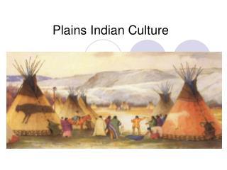 Plains Indian Culture