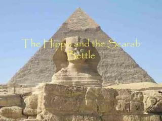 The Hippo and the Scarab  Bettle