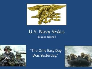U.S. Navy SEALs by  Jace Roshell