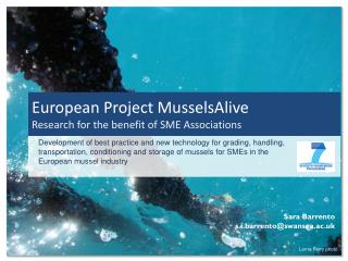 European Project  MusselsAlive Research for the benefit of SME Associations