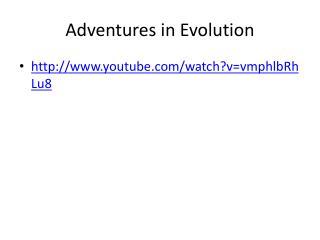 Adventures in Evolution