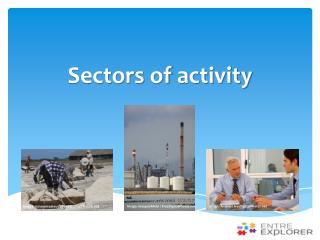 Sectors of activity