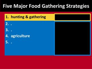 Five Major Food Gathering Strategies