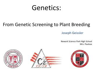 Genetics: From Genetic Screening to Plant  B reeding