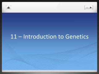 11 � Introduction to Genetics