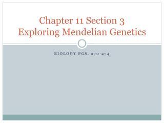 Chapter 11 Section 3 Exploring  Mendelian  Genetics