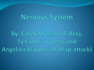 The nervous system  very complex system in the body has many, many parts