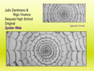Julio  Zambrano  & Rigo Vivanco Sequoia High School Original Spider Web
