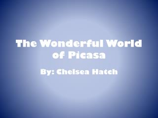 The Wonderful World of Picasa