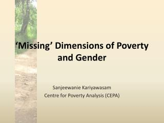 Missing  Dimensions of Poverty and Gender