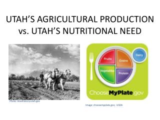 UTAH'S AGRICULTURAL PRODUCTION vs. UTAH'S NUTRITIONAL NEED