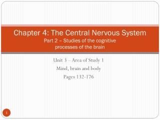 Chapter 4: The Central Nervous System Part 2 – Studies of the cognitive  processes of the brain