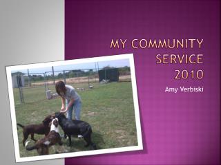 My Community Service 2010