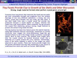 H. Li, H. L. Xin, D. A. Muller and L. A. Estroff,  Science 326,  1244 (2009).