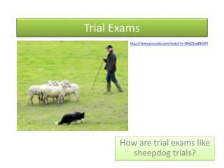 Trial Exams