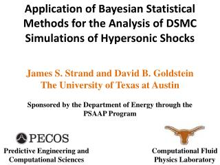 James S. Strand and David B. Goldstein The University of Texas at Austin