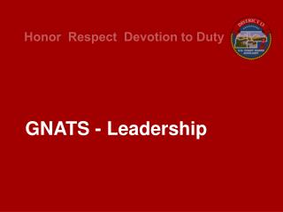 GNATS - Leadership