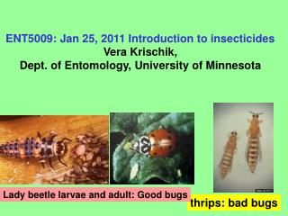 ENT5009: Jan 25, 2011 Introduction to insecticides Vera Krischik,  Dept. of Entomology, University of Minnesota
