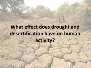 What effect does drought and desertification have on human activity?