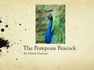 The Pompous Peacock