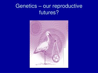 Genetics – our reproductive futures?
