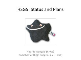 HSG5: Status and Plans