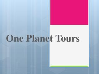 One Planet Tours