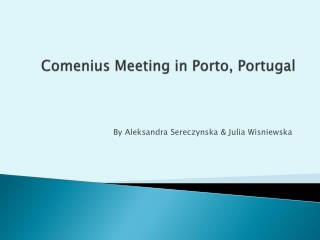 Comenius  Meeting in  Porto, Portugal