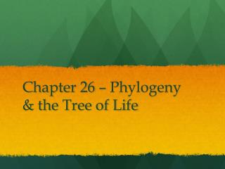Chapter 26 – Phylogeny & the Tree of Life