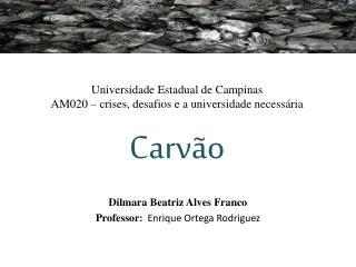 Universidade Estadual de Campinas AM020 – crises, desafios e a universidade necessária Carvão