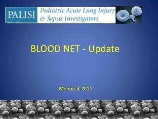 BLOOD NET - Update