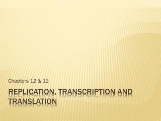 Replication, transcription and translation