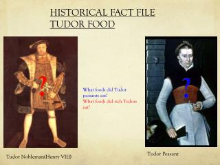 HISTORICAL FACT FILE  TUDOR  FOOD