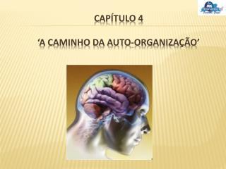Capítulo 4 'A caminho da auto-organização'