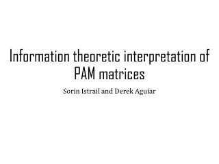 Information theoretic interpretation of PAM matrices
