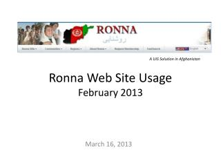 Ronna  Web Site Usage February 2013