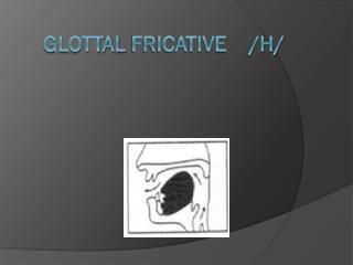 Glottal  Fricative    /h/