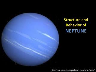 Structure and  Behavior of NEPTUNE