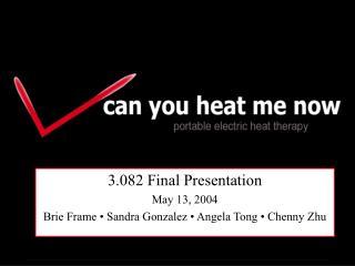 3.082 Final Presentation May 13, 2004 Brie Frame • Sandra Gonzalez • Angela Tong • Chenny Zhu