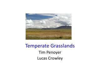 Temperate Grasslands Tim Penoyer Lucas Crowley