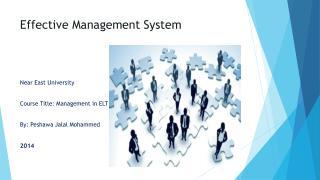 Effective Management System