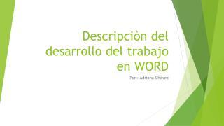 Descripciòn  del desarrollo del trabajo en WORD