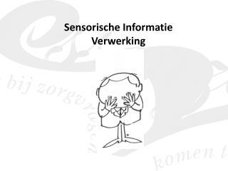 Sensorische Informatie Verwerking