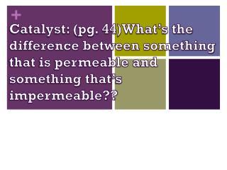 Agenda Catalyst  Permeability Cell membrane  Objectives