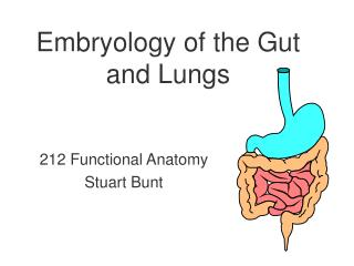 Embryology of the Gut and Lungs
