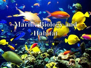 Marine Biology and Habitat