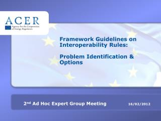 Framework Guidelines on Interoperability Rules: Problem Identification & Options